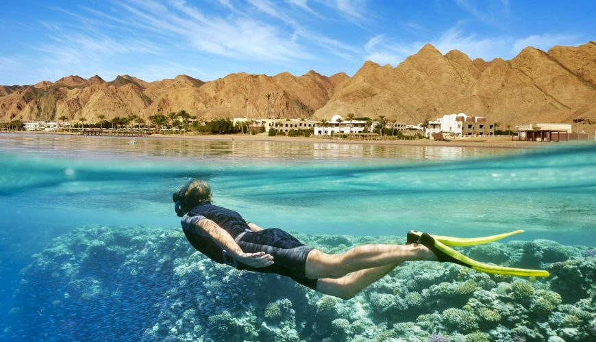 Day trip and Snorkelling from Sharm El Sheik