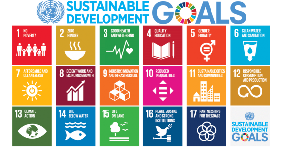 Sustainability Development Goals New